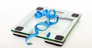 שורפי שומן – כך משיגים את השינוי